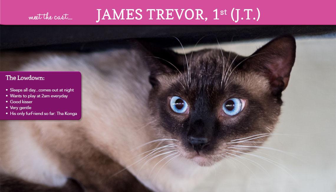 James Trevor