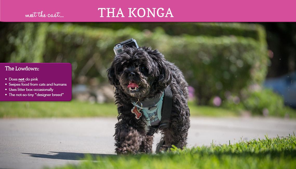 Tha Konga
